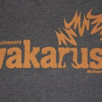 Wakarusa 10th Anniversary T-Shirt